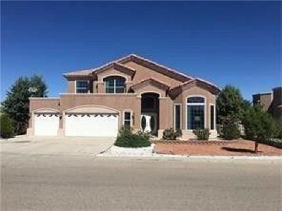 Single Family Home For Sale: 1035 Los Moros Drive