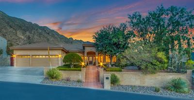 El Paso Single Family Home For Sale: 116 Camino Barranca Street