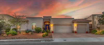 El Paso Single Family Home For Sale: 6239 Franklin Eagle Court