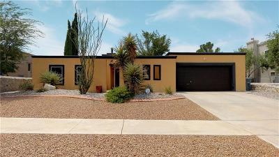 El Paso Single Family Home For Sale: 775 Cheltenham Drive