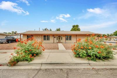 El Paso Single Family Home For Sale: 8300 Hopewell Drive