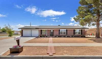 El Paso Single Family Home For Sale: 2901 Brady Place