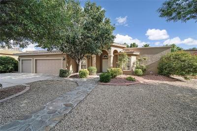 El Paso Single Family Home For Sale: 652 Country Oaks Drive