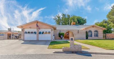 Single Family Home For Sale: 1605 Paul Harney Drive