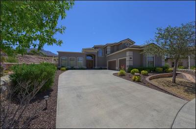 El Paso Single Family Home For Sale: 1308 Franklin Bloom Court