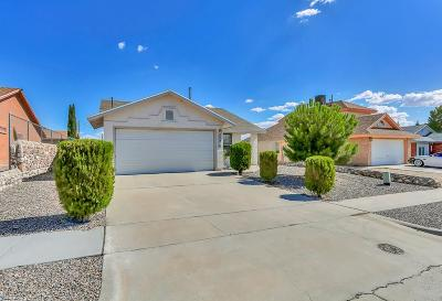 El Paso Single Family Home For Sale: 276 Thorn Ridge Circle