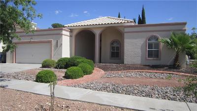 El Paso Single Family Home For Sale: 6804 Echo Cliffs Drive