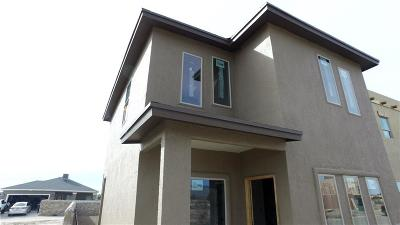 El Paso Single Family Home For Sale: 6545 Hoop Street