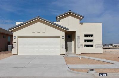 Single Family Home For Sale: 1029 Bombardier Place