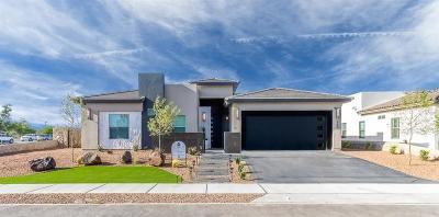 El Paso Single Family Home For Sale: 13582 Lartington