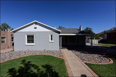 El Paso Single Family Home For Sale: 1117 Galloway Drive