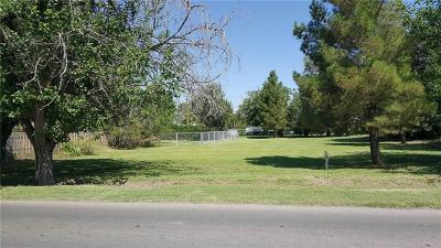 El Paso Single Family Home For Sale: 0000 Bird Avenue
