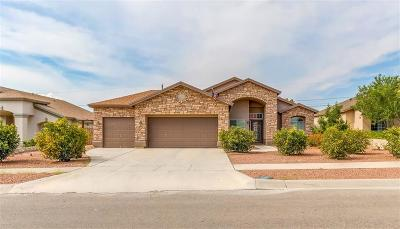 Canutillo Single Family Home For Sale: 329 Phil Hansen Drive