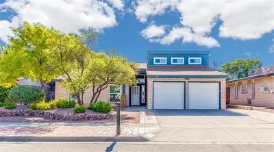 Single Family Home For Sale: 1716 Ron Cerrudo Street