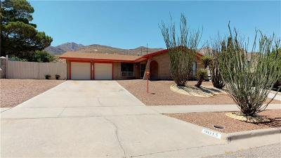 El Paso Single Family Home For Sale: 9015 Galena Drive