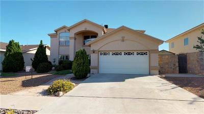 Single Family Home For Sale: 1239 Romy Ledesma