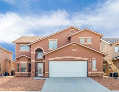 El Paso Single Family Home For Sale: 1516 Century Plant Drive