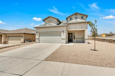 El Paso Single Family Home For Sale: 7601 Red Cedar Drive