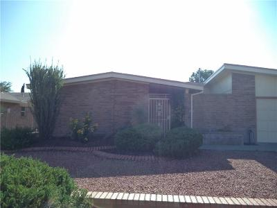 Single Family Home For Sale: 1629 Dick Ritter Drive