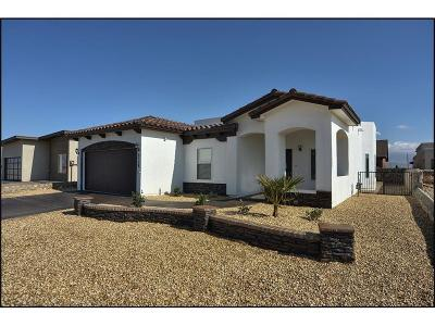 El Paso TX Single Family Home For Sale: $232,500