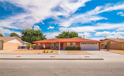 El Paso Single Family Home For Sale: 8612 Wh Burges Drive