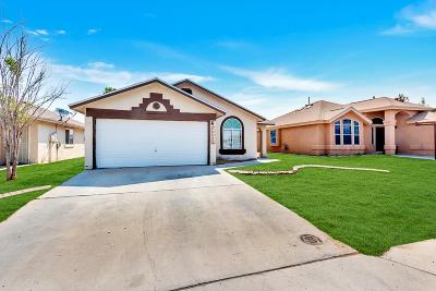El Paso Single Family Home For Sale: 10549 Valle Blanco