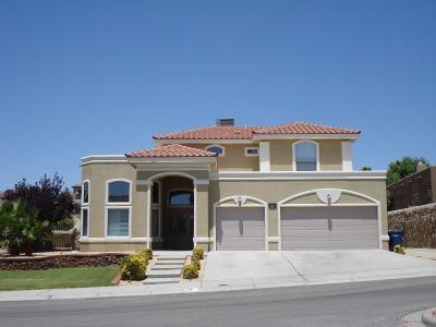 El Paso Single Family Home For Sale: 1137 Calle Lomas Drive