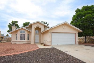 El Paso Single Family Home For Sale: 10732 White Sands Drive