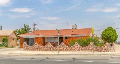 El Paso Single Family Home For Sale: 10200 Alcan Street