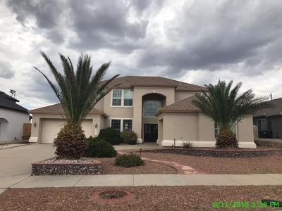 Canutillo Single Family Home For Sale: 617 Phil Hansen Drive
