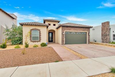 El Paso Single Family Home For Sale: 12753 Valentine Avenue