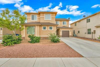 El Paso Single Family Home For Sale: 12644 Paseo Rosannie Avenue