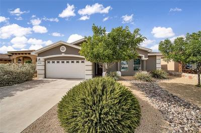 Horizon City Single Family Home For Sale: 14737 Cactus Ridge Lane