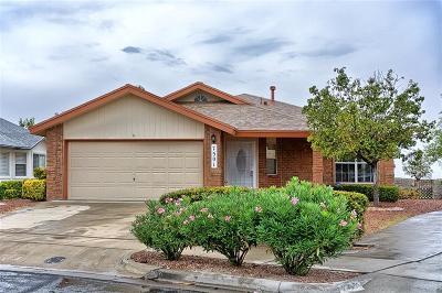 El Paso Single Family Home For Sale: 7501 Plaza Redonda Drive