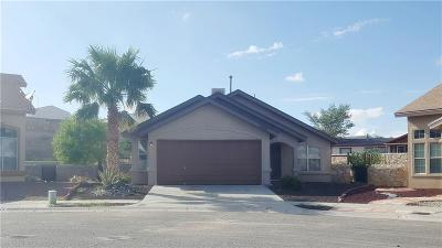 El Paso Single Family Home For Sale: 11801 Deer Grass Circle