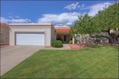 El Paso Single Family Home For Sale: 7020 Toluca Drive