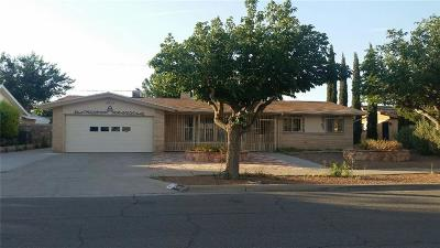 El Paso Single Family Home For Sale: 8713 Parkland Drive