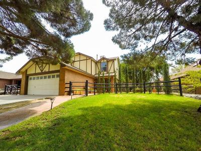 El Paso Single Family Home For Sale: 1108 Shawnee Ln.