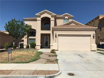 El Paso Single Family Home For Sale: 11553 Porfirio Payan Drive