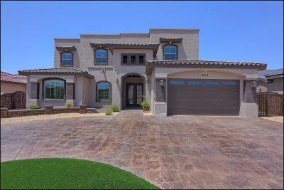 El Paso Single Family Home For Sale: 863 Colonial Bluff