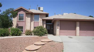 El Paso Single Family Home For Sale: 12096 Pueblo Laguna Drive