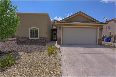 El Paso TX Single Family Home For Sale: $250,000