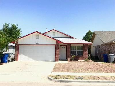 El Paso Single Family Home For Sale: 11613 Bell Tower Drive