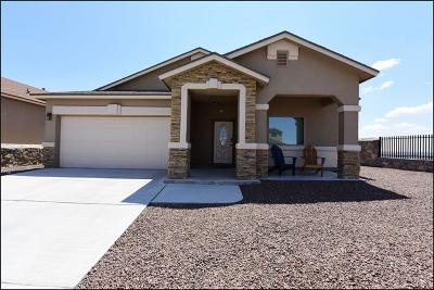 El Paso Single Family Home For Sale: 7656 Mammoth Lane