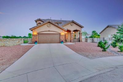 El Paso Single Family Home For Sale: 500 Valley Plum Avenue