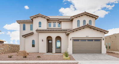 Single Family Home For Sale: 2637 Tierra Murcia
