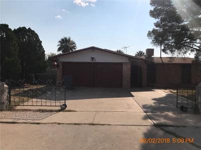 El Paso Single Family Home For Sale: 10613 Captain Valtr Street