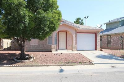 El Paso Single Family Home For Sale: 9117 Lacebark Elm Drive