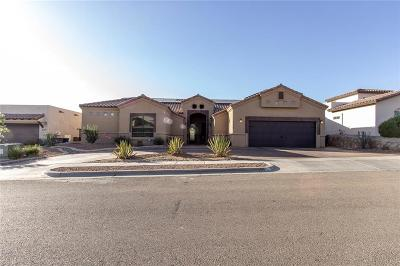 El Paso Single Family Home For Sale: 7319 Brays Landing Drive
