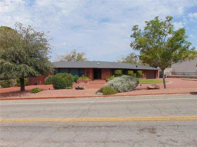 El Paso Single Family Home For Sale: 901 Thunderbird Drive